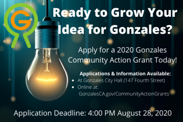 2020 Community Action Grant Ad Photo: Light bulb, Gonzales Way Logo