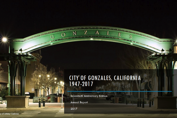 Gonzales City Arch at night.