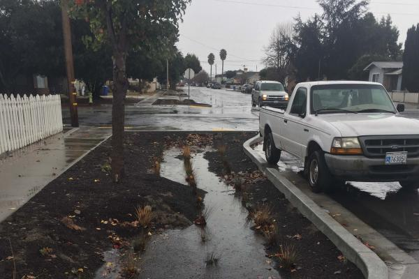 Puddle by street where Low Impact Development is being assessed